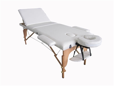 Portable Massage Bed Table With Reclineable Back